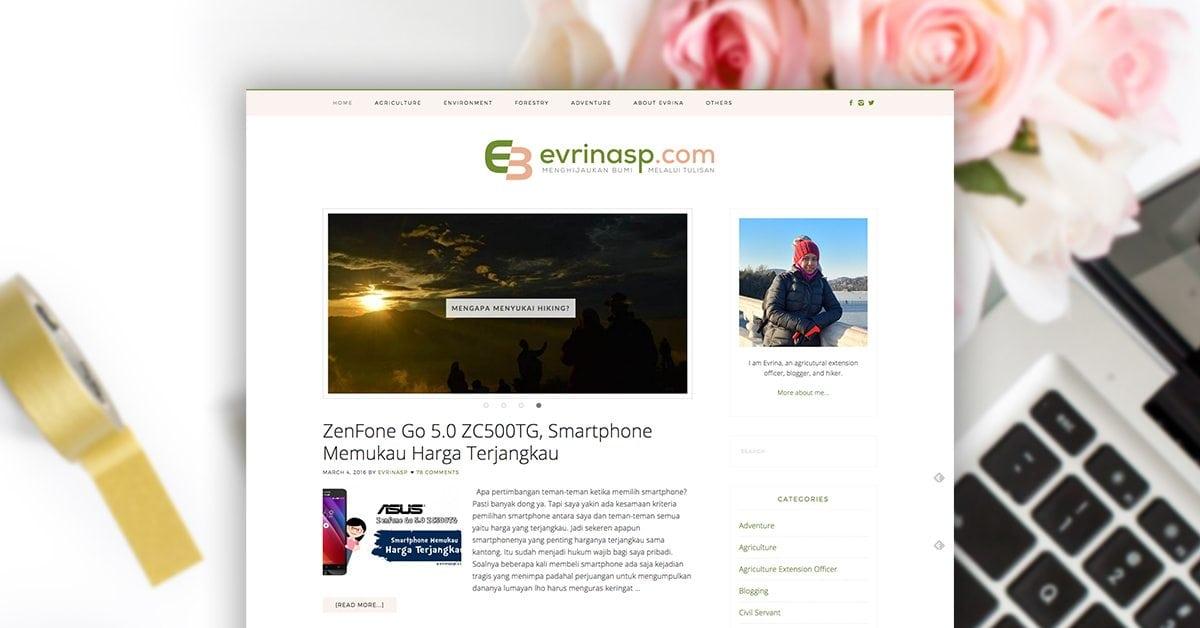 custom blog design portfolio evrinasp