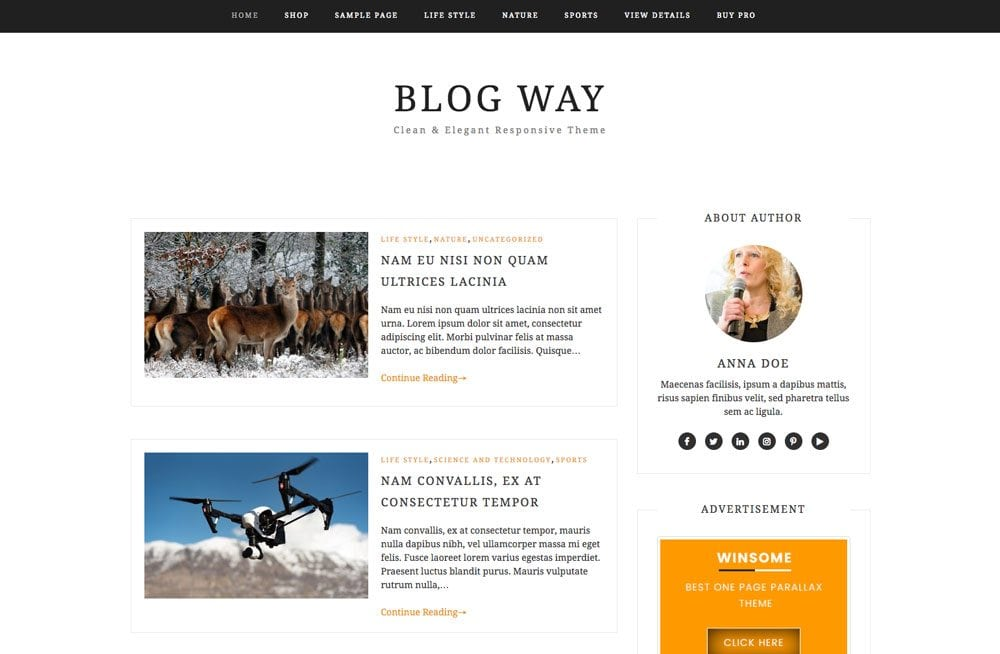 Blog Way Free Simple and Clean WordPress Themes For Your Blog