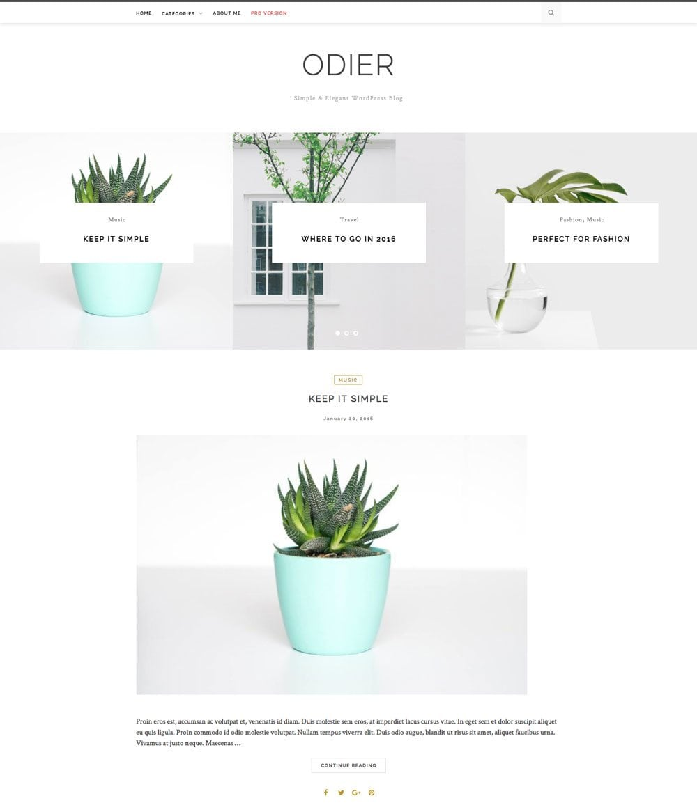 Odier Free Simple and Clean WordPress Themes For Your Blog