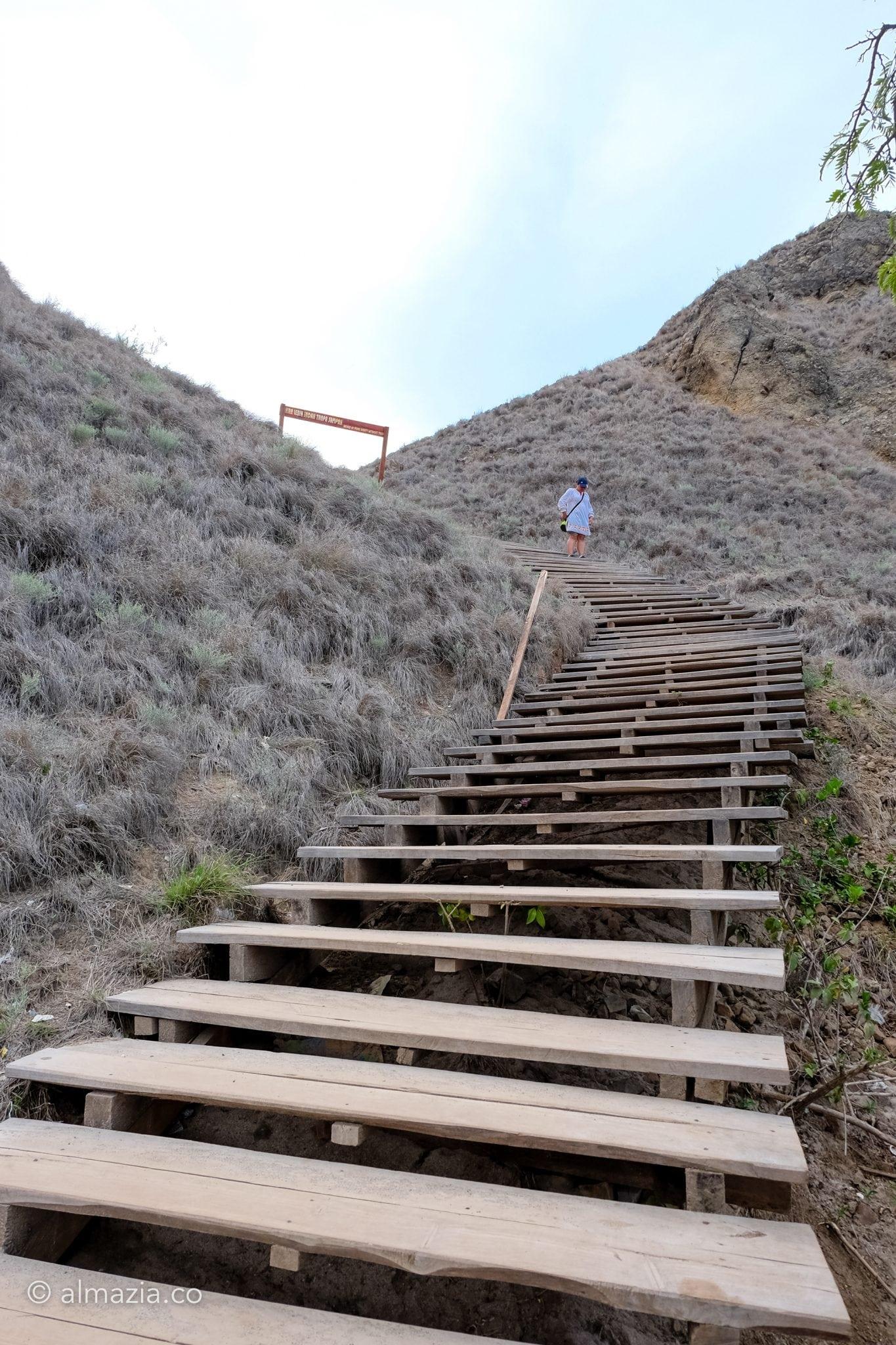 Tangga kayu menuju puncak Pulau Padar